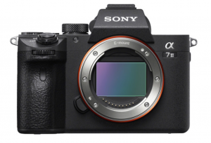 Making the switch from canon to sony
