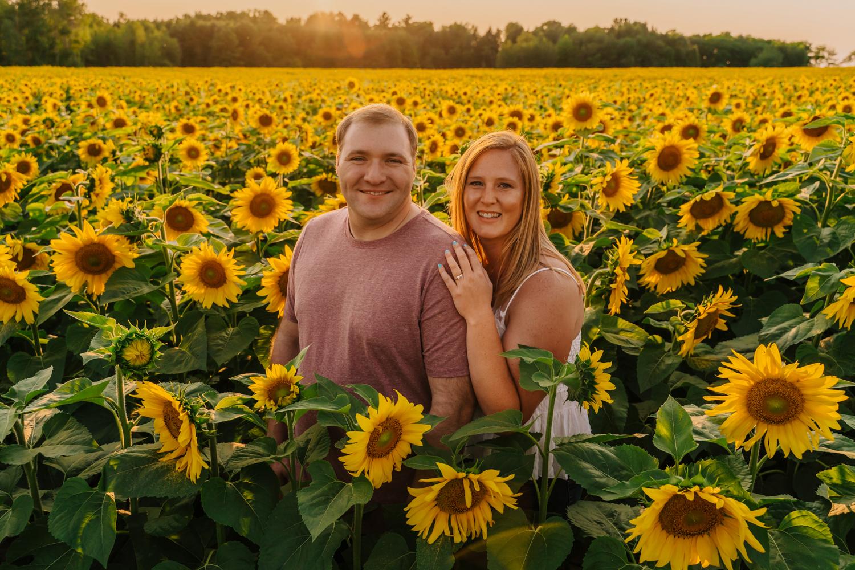 traverse city sunflower shoot